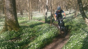 I have found a lot of joy in my training through MTB this spring